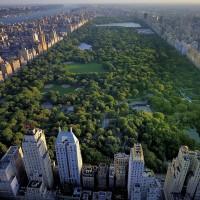 Central-Park-New-York-01-1600x960