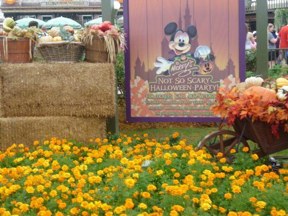 halloween à Walt Disney World